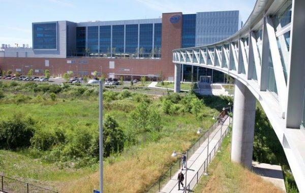 Daytime photo of the oregon intel bridge